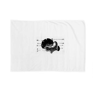 思考回路の末 Blankets