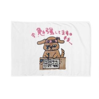 今勉強しています。 Blankets