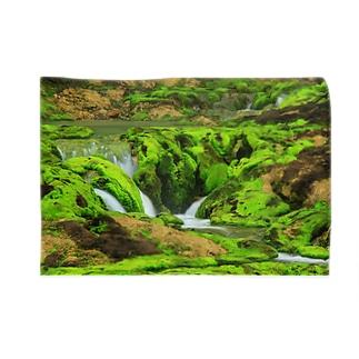 苔の間 Blankets