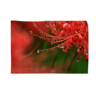 Toshiaki Sakuraiのヒガンバナのまつげ Blankets