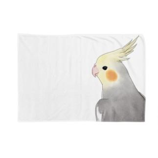 見つめるオカメインコちゃん【まめるりはことり】 Blankets