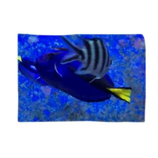 交差する魚 ブランケット