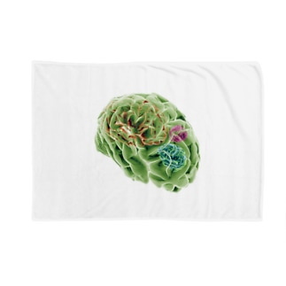 amnesia (BRAINS UP) Blankets