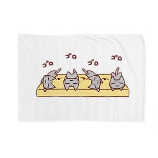 マットでゴロゴロ Blankets