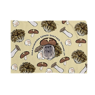きのこ犬 ペキニーズ フォーン 背景あり Blanket
