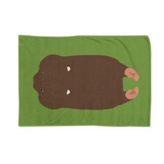 ウォンケット Blanket