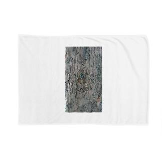 ミンミンゼミ Blankets