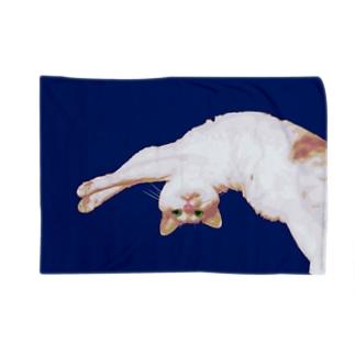 寝そべるニャン Blankets