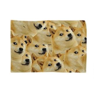 Doge Blankets