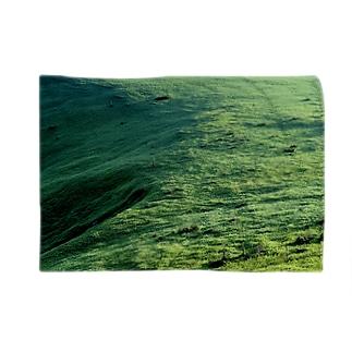 草原 Blankets