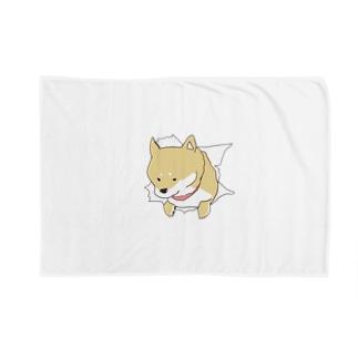 突きぬ犬(茶) Blankets