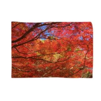 紅葉へ行こうよう Blankets