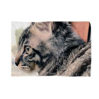 猫の横顔 ブランケット