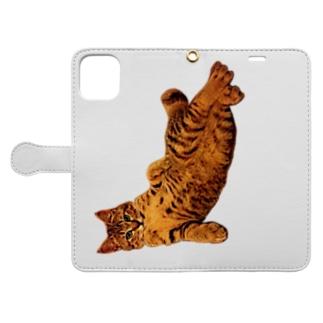 Elegant Cat 4 Book-style smartphone case