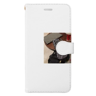 4699 Book-style smartphone case