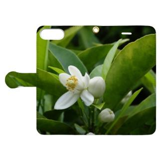日本の花:ミカンの花 Japanese flowers: Mikan (Orange) Book-style smartphone case