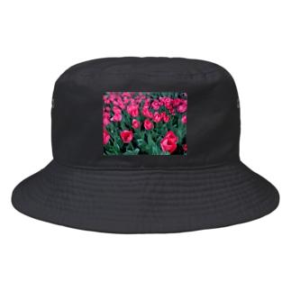 エッグ矢沢@世界旅行中のウクライナのチューリップ Bucket Hat