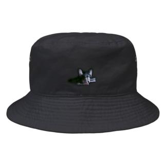 狂ったチワワ Bucket Hat
