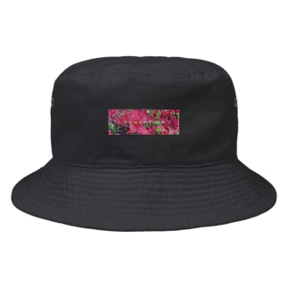 Sensationなツツジ Bucket Hat