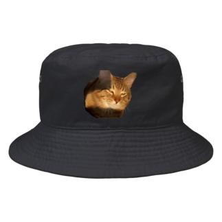 キラーン(ΦωΦ)フフフ… Bucket Hat