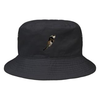 チャム&シロ Bucket Hat