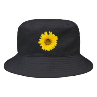 バッタにかじられちゃった向日葵 Bucket Hat