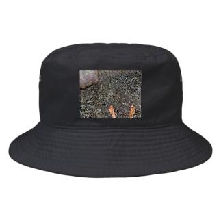 石 Bucket Hat