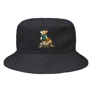 マフラー犬 コーギー Bucket Hat