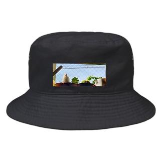 松砂丸商店の白文鳥のチマフミ Bucket Hat