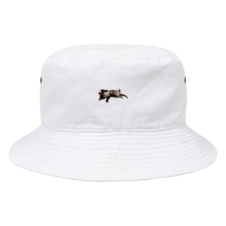猫ちゃん  Bucket Hat