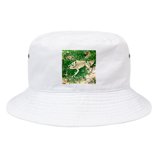 Fantastic FrogのFantastic Frog -Evergreen Version- Bucket Hat