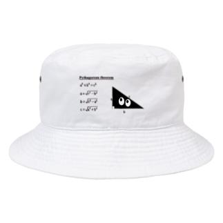 スリスリ君が教えるピタゴラスの定理 Bucket Hat