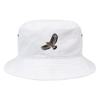 しまのなかま カンムリワシ(成鳥) Bucket Hat
