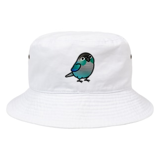Cody the LovebirdのChubby Bird ウロコインコ ターコイズ Bucket Hat