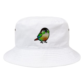 Cody the LovebirdのChubby Bird ホオミドリウロコインコ Bucket Hat