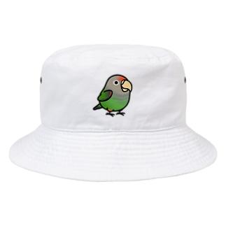 Chubby Bird ハネナガインコ Bucket Hat