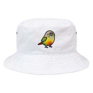 Cody the LovebirdのChubby Bird ホオミドリウロコインコ パイナップル Bucket Hat