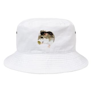 ハム Bucket Hat