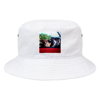aozora0817のいぬっこ Bucket Hat