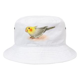 オカメインコ レキ【まめるりはことり】 Bucket Hat