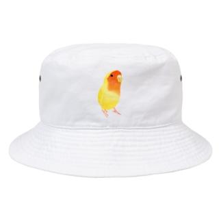 まめるりはことりのコザクラインコ おすましルチノー【まめるりはことり】 Bucket Hat