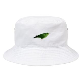 サザナミインコ グリーン【まめるりはことり】 Bucket Hat