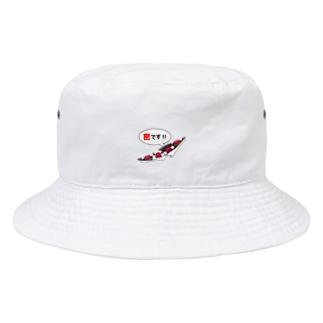 密です!フィンチさん【まめるりはことり】 Bucket Hat