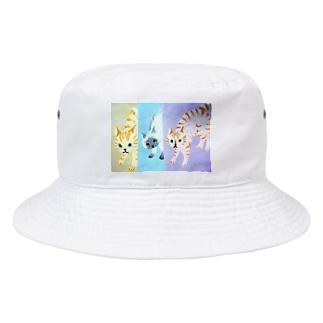 シャーしてる猫猫猫 Bucket Hat