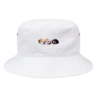 ころちょこぽんた Bucket Hat