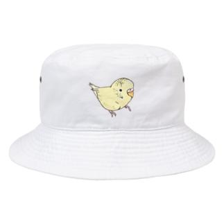 可愛いセキセイインコ おすましちゃん【まめるりはことり】 Bucket Hat