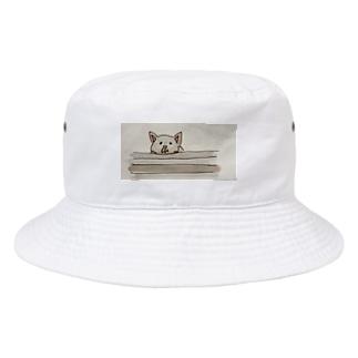 不満ないぬ Bucket Hat
