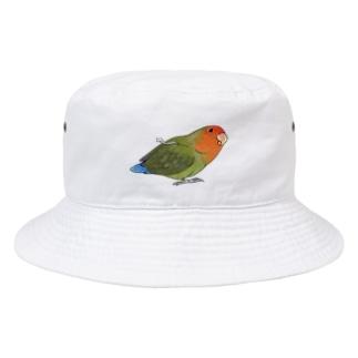 おすましコザクラインコ きなこちゃん【まめるりはことり】 Bucket Hat