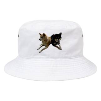 柴犬2頭 Bucket Hat