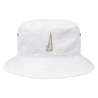 尾羽がピン 可愛いオカメインコちゃん【まめるりはことり】 Bucket Hat